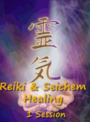 Reiki and Seichem 1 Healing Session